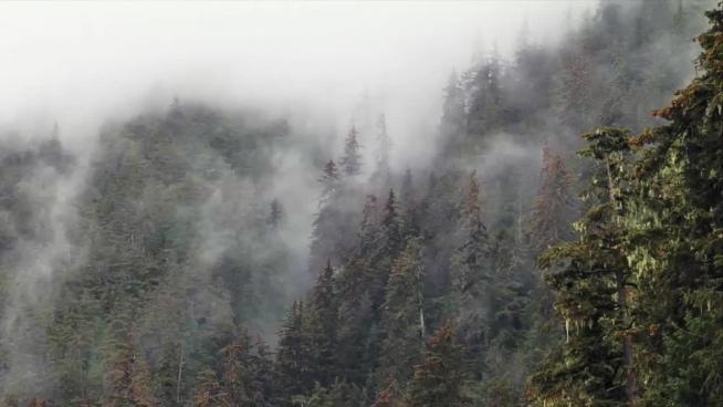 quick clip of mist vaporing on wild mountain