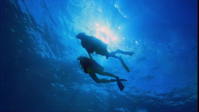couple enjoy diving in beautiful sea
