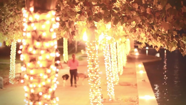 couple walking with pets on sparkling decorated road
