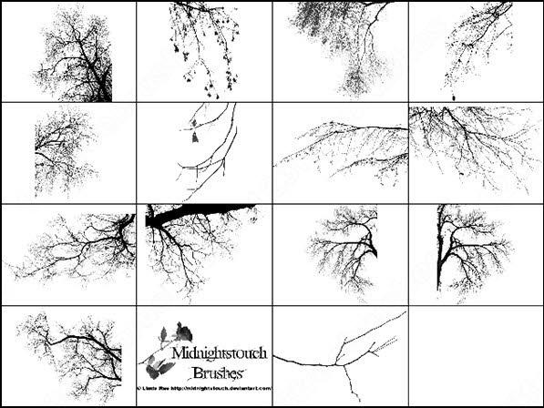 14 photoshop 7 tree border brush