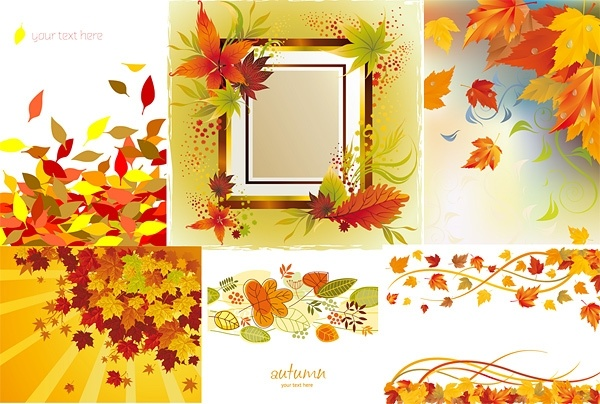 6 autumn maple leaf border vector