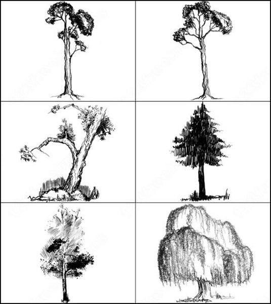 6 hi-res doodled trees  brush