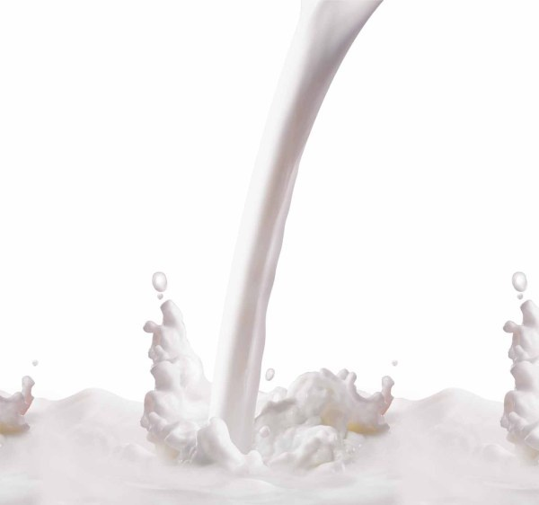 a splash of milk flower psd layered