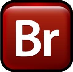 Adobe Bridge CS3