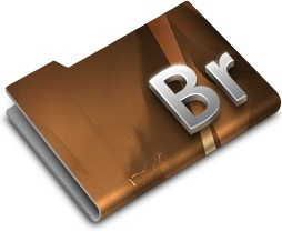 Adobe Bridge CS3 Overlay