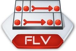 Adobe flash flv