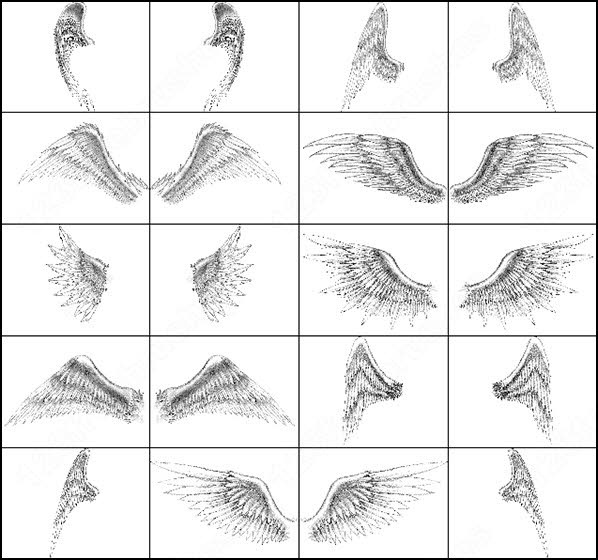 angel wings brush