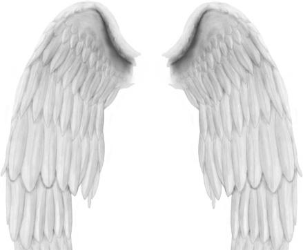 Angel Wings PSD file