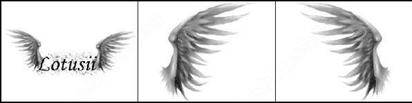angelic wings brush