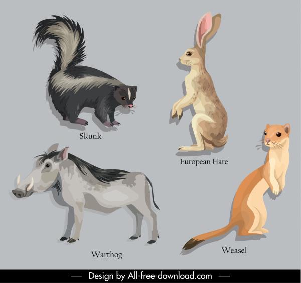 animal education design elements skunk warthog rabbit weasel sketch