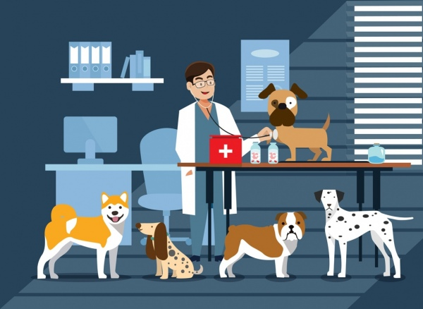 animal hospital drawing dogs doctor icons colored cartoon