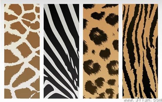 leather pattern templates giraffe tiger zebra leopard sketch