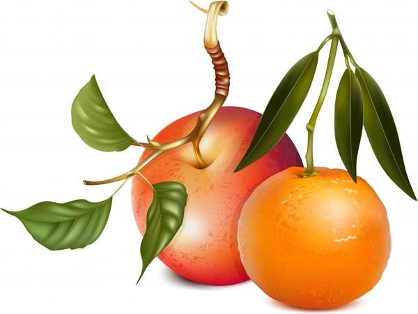 fruits icons apple orange sketch realistic design