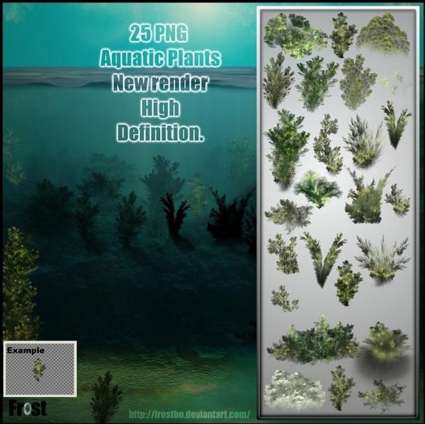 Aquatic Plant Brushes