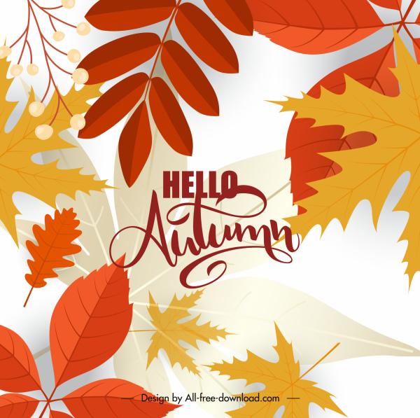autumn leaves background elegant bright colorful decor