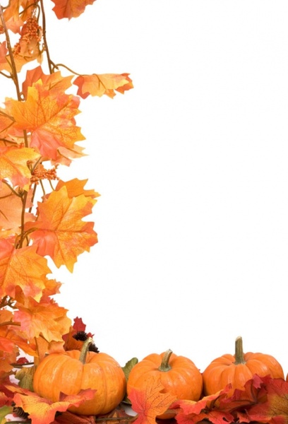 autumn leaves pumpkin picture frame 05 hd pictures