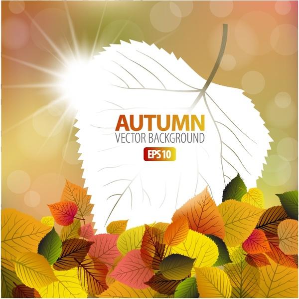 autumn maple leaf background vector veins