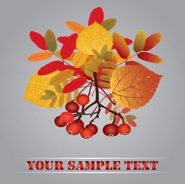 autumn maple leaves autumn fruit vector