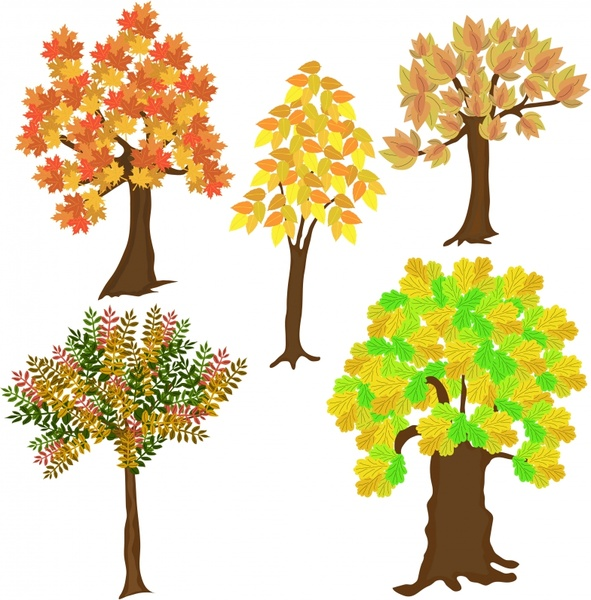 autumn trees icons colorful classical handdrawn sketch