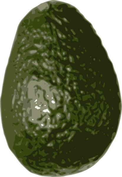 Avocado Images Clip Art