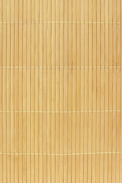 bamboo background picture