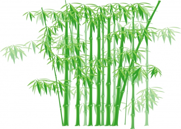 bamboo background classical design green white ornament