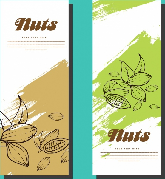 banner template sets nuts background hand drawn sketch
