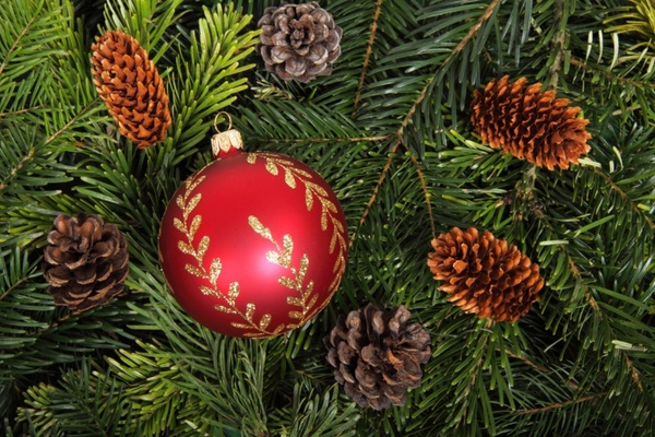 bauble on christmas tree background