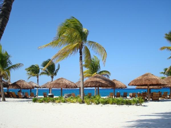 Goa Beach Free Stock Photos Download 4 300 Free Stock Photos For