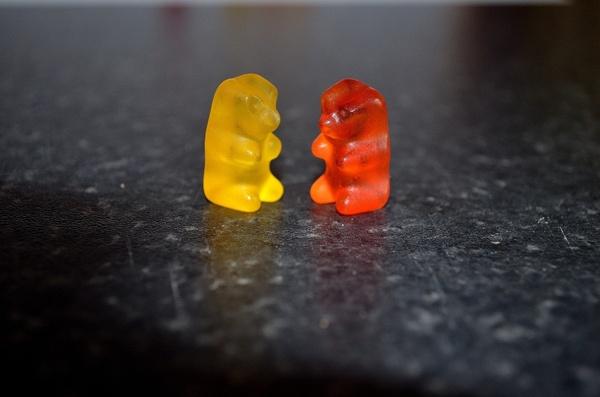 bears food candy