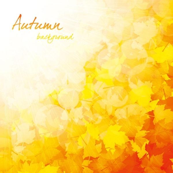 beautiful autumn background 03 vector