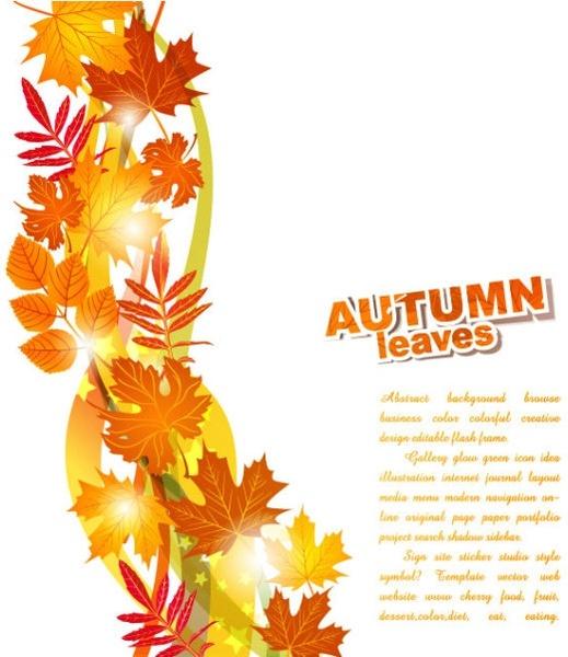 beautiful autumn leaf background 02 vector