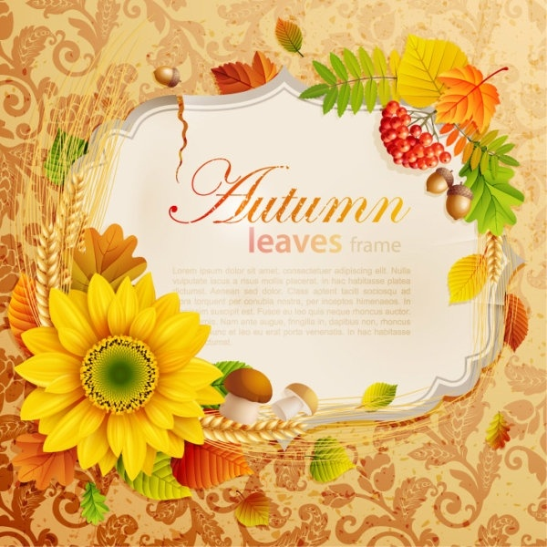 beautiful autumn leaves frame background 04 vector