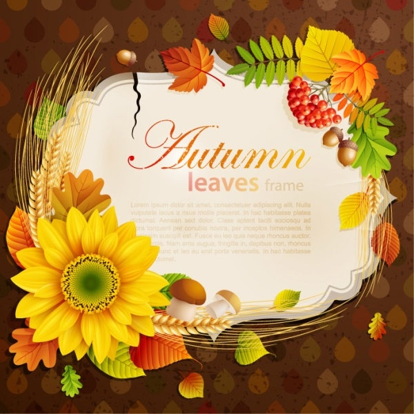 beautiful autumn leaves frame background 06 vector