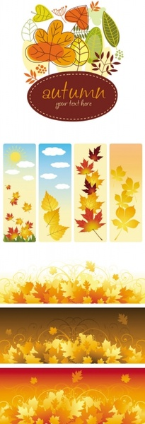 beautiful autumn leaves vector
