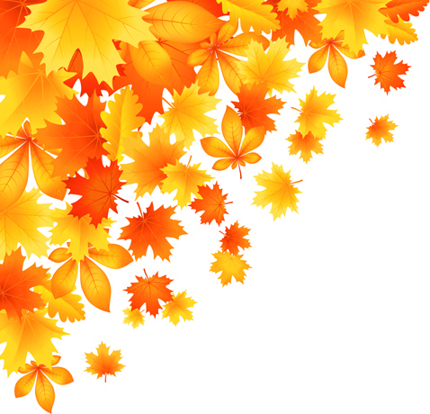 beautiful autumn leaves vector free vector in encapsulated vector swirls background vector swirls free download