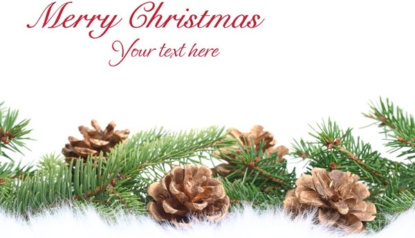 beautiful christmas design elements 69 hd picture