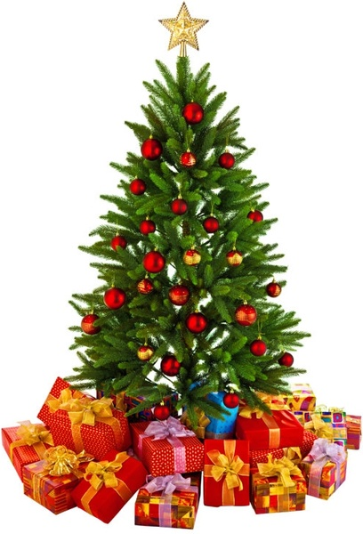 beautiful christmas tree 01 hd pictures
