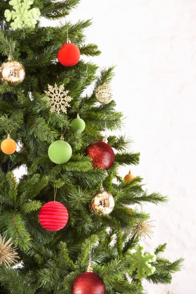 beautiful christmas tree 5 hd pictures