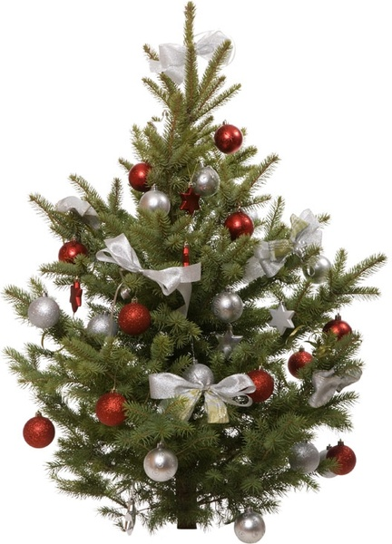 beautiful christmas tree 7 hd picture