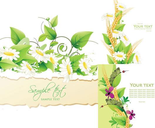beautiful flowers backgrounds