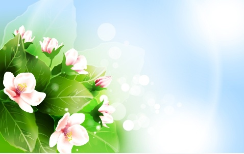 spring background blooming flowers decor colorful modern design