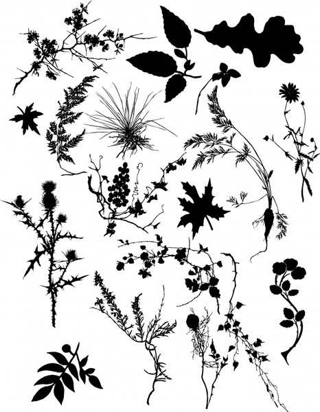 plants icons black white leaf branch sketch