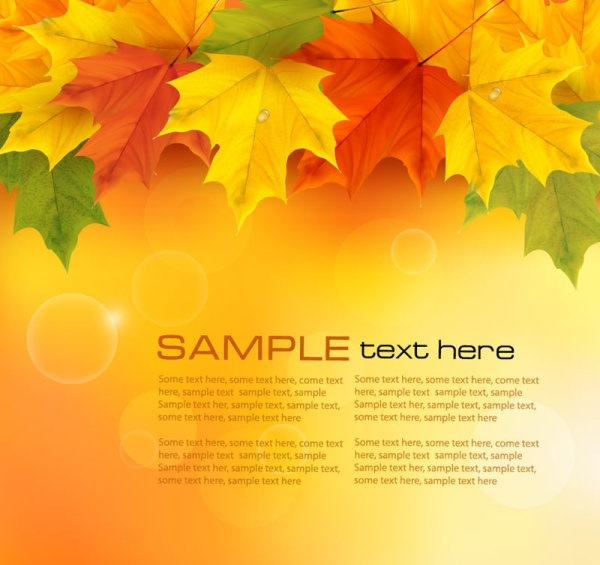 beautiful maple leaf background 05 vector