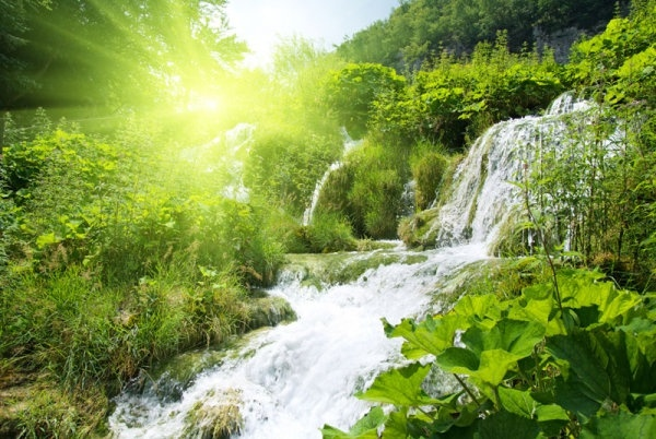 Beautiful nature free stock photos download (21,443 Free stock photos) for commercial use ...