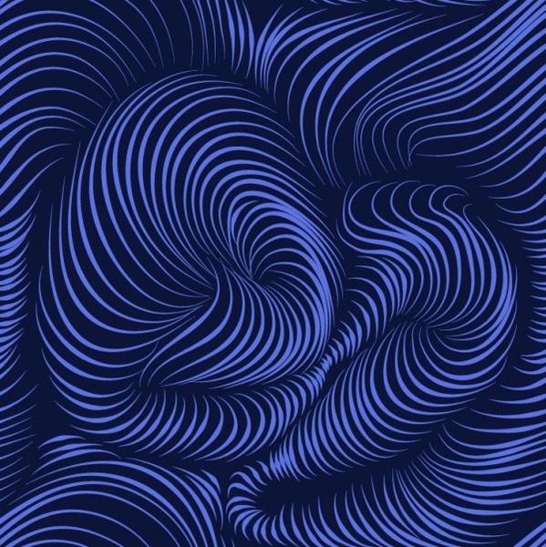 beautiful pattern background 12 vector