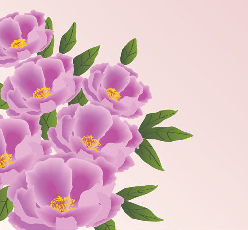 beautiful pink flowers vector background set