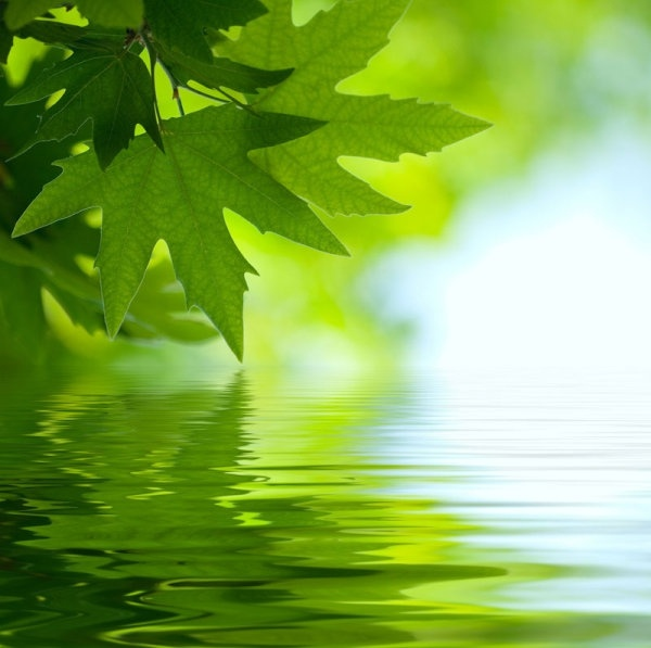 beautiful waterscape reflection series 01 hd pictures