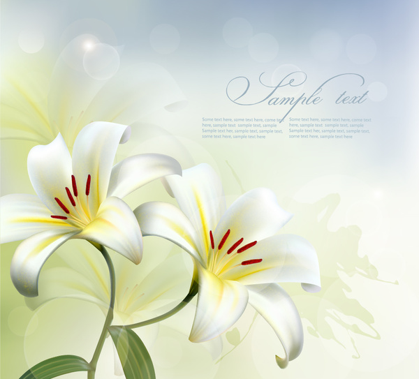beautiful white flower vector background