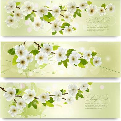 beautiful white flowers vector banner